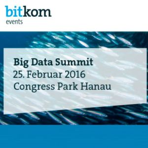 Big Data Summit 2016 Logo