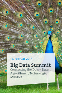 Big Data Summit 2017 Logo